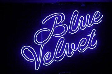 Kopenhagen corporate event venues Partyraum Blue Velvet image 0