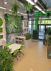 Hannover Schulungsräume Meetingraum Das Grüne Büro image 9