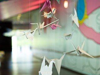 Londres corporate event venues Salle de réception The Laban Building - Foyer image 2