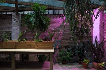 Barcelona corporate event venues Besonders Estudio botánico image 2