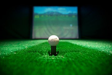Berlin corporate event venues Private residence Spreespeicher - Capitol Yard Golf Lounge image 7