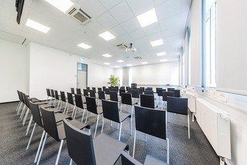 Francfort  Salle de réunion Picasso3 image 1