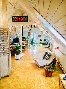 Zurich  Loft Cosy rooftop space multi-usages image 2
