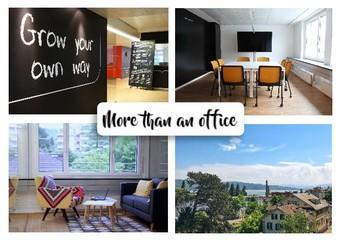 Zurich  Espace de Coworking Office LAB Wollishofen - Meeting room long image 3
